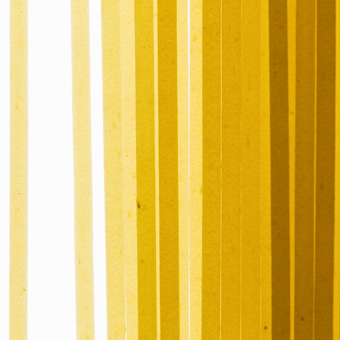 Fotografo Roma - Macro close-up spaghetti