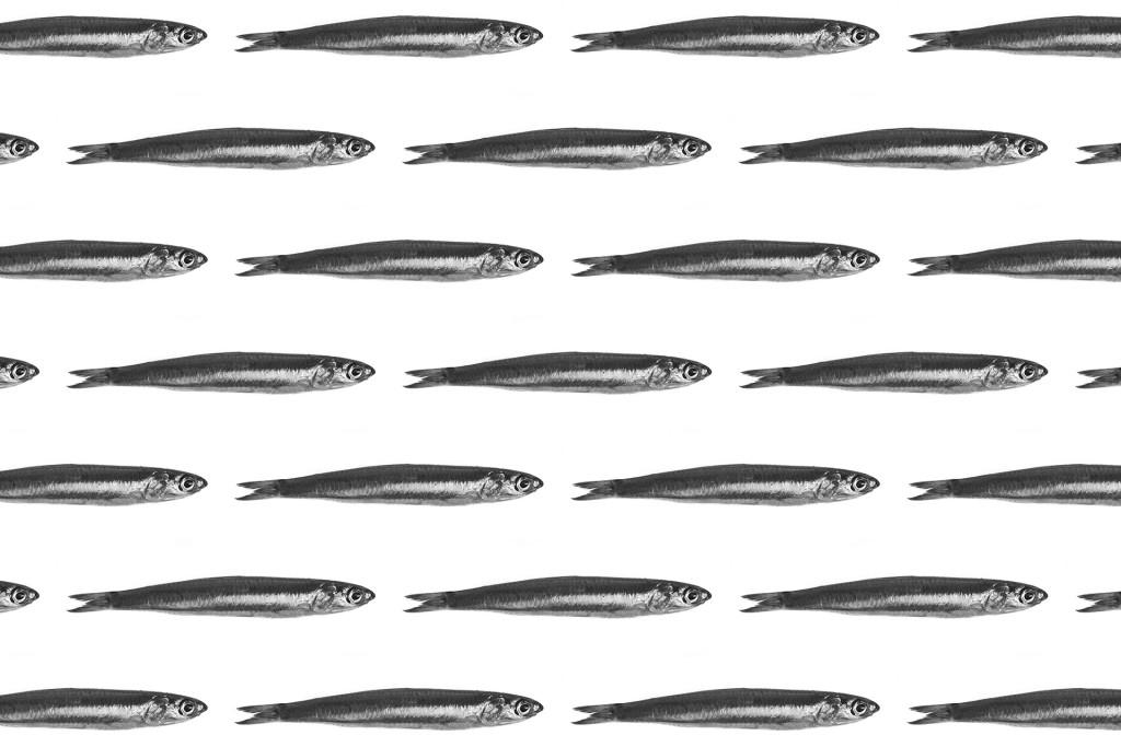 _nf-pattern-alici