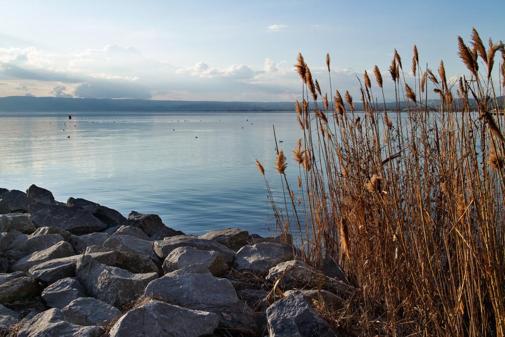 _nf-bolsena-lake