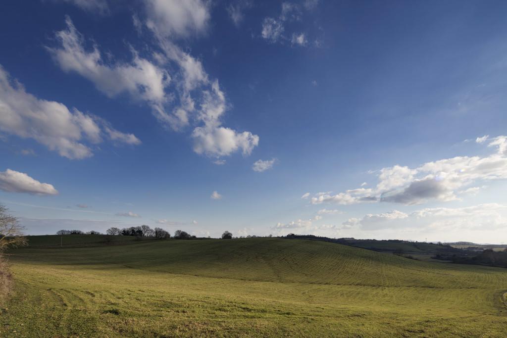 _nf-tuscia-landscape