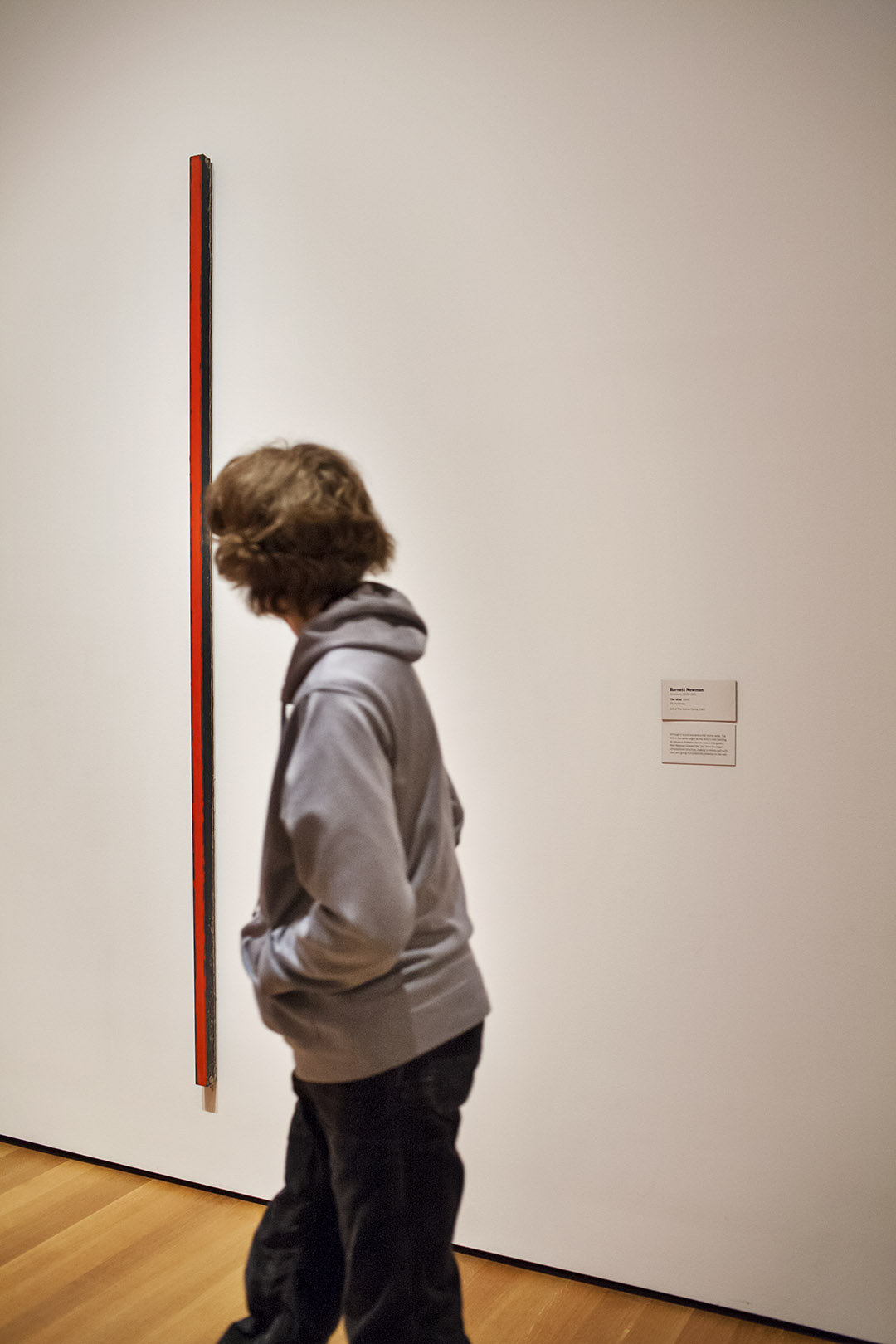 _nf - NewYork, MoMA - Barnett Newman - The wild