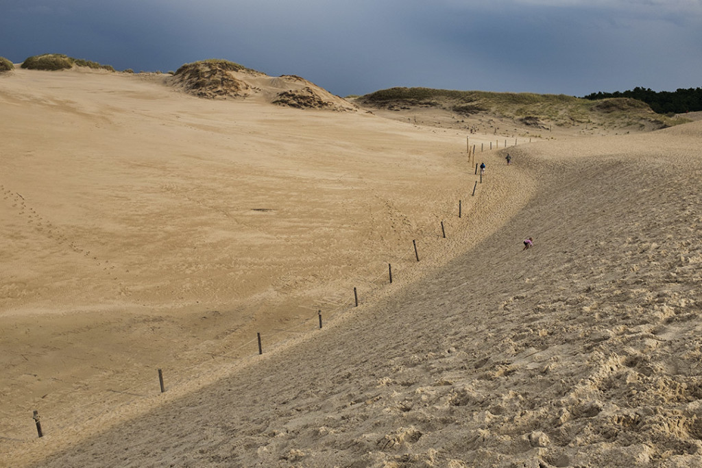 Slowinski Park: Dune mobili
